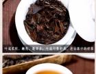 老年人可以经常喝福鼎老白茶