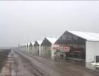 二手10米篷房,二手15米篷房,二手欧式篷房