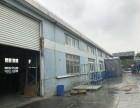 松江工业区2400平独栋厂房出租 办公+生产 可环评