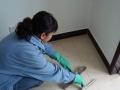 提供开荒保洁,日常保洁,公司保洁,钟点工,刮玻璃。