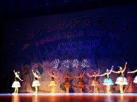 三亚梦竹舞蹈中国舞芭蕾表演班 类别 舞蹈