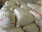 黑龙江省内万亩田蒜加工厂底价供应扒皮蒜瓣蒜米
