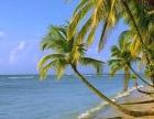 旅行社、一日游、自助游、郊区游、农家乐、度假村