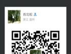 乐清柳市原产地电器市场一手商铺,