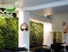 有氧室内环保装饰植物墙加盟