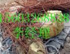 承德废铜销子废电缆回收价格