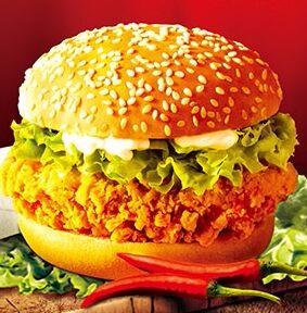 加盟一家麦加美汉堡怎么样