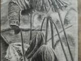 明秀东路北湖路聚信画室寒假美术绘画培训班招大学生高中生