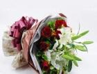 教师节康乃馨玫瑰百合生日鲜花开业花篮预订坞城鲜花店