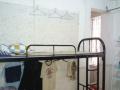 世界之窗 白石洲科技园大学生求职公寓床位 短租月租