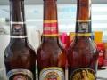 【德国慕尼黑埃丁格啤酒】全国招商加盟 夜场 流通啤
