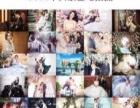 通辽圣罗威全球蜜月旅拍3999双城套餐