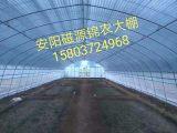 养殖大棚,大棚蔬菜,钢架大棚配件