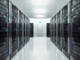 G口大带宽不限流量服务器租用需要多少钱?哪里的速度快?