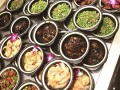 餐饮加盟店10大品牌-泰安佰佳旺快餐加盟