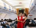 清鸟民航空地勤服务管理就业培训班