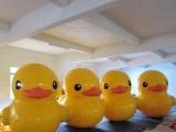 香港大黄鸭|充气鸭|充气大黄鸭|大黄鸭模型