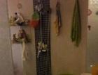 金星立交桥爱尚公寓 2室2厅67平米 精装修拎包入住