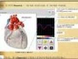 多功能全科健康检测仪,9DNLS共振检测仪价格