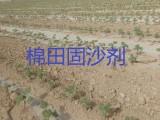 内蒙生态固沙剂