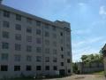 沿320国道嶶派建筑六层框架结构楼房 写字楼 1300