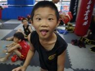 天津市武跃天下青少年儿童武术散打暑期培训班