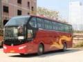 专业提供大巴,中巴,婚礼租车、旅游包车、代客接送机