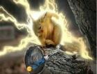 魔王松鼠幼崽金花松鼠幼崽黄山松鼠幼崽等