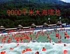 这个夏天相约名岛度假区