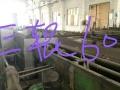 出售轧钢管旧轧机