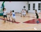 (8元6节专业课)体能 篮球 美术 主持 舞蹈 声乐可以任选