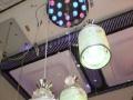 餐厅个性时尚吊灯