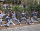少林寺文武学校的学员有机会登上2018年河南省少儿春晚节目