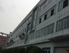 东区原房东带装修一楼2200平米厂房出租