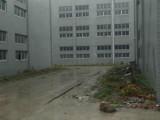 东西湖走马岭天龙都市工业园3612平米独门独院厂房出售