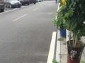 发展大道 易陶管,居然之家后侧 商业街卖场 230平米