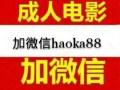 鞍山百度网盘电影账号出售V信haoka88