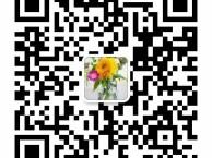 云南养生门店预约小程序系统软件开发