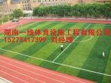 邵阳新宁县人造草足球场设计施工 包工包料包划线 湖南一线体育