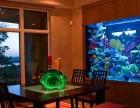 丽水大型鱼缸