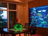 苏州定制大型鱼缸私人鱼缸定制别墅鱼缸量身设计