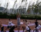 学印度传统瑜伽,瘦身瑜伽,舞韵瑜伽,学肚皮舞,爵士到富海教育