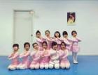 上海市中国舞培训首选艺盈专业中国舞培训中心