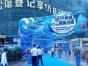 海洋展览大型海洋生物出租活体企鹅出租海狮表演