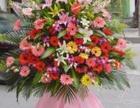 邕江大学鲜花店 附近拱门展会布置 高峰林场花篮 花束订花配送
