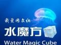 上中趣味活动策划 公司水上文化建设 水上趣味活动