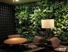 昆明植物屏风 绿墙装饰