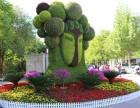 石家庄植物绿雕设计公司