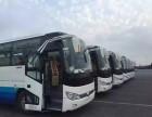 通州汽车租赁,客车大巴车包车,北京大巴租车公司