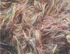 聊城废电缆专业回收废铜电缆 变压器回收